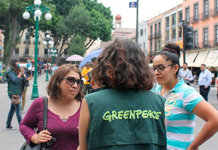 Greenpeace actions taken against sexual harassment