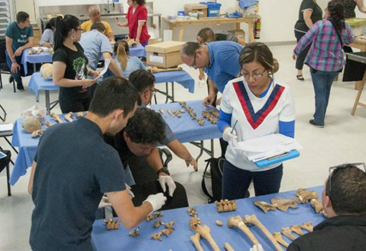 Argentine Forensic Anthropology Team (EAAF)