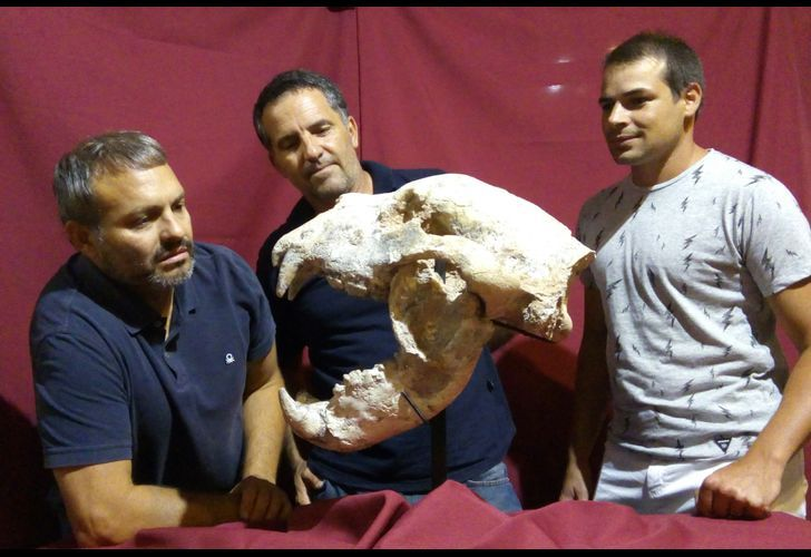 Argentine scientists Matias Swistun, Jose Luis Aguilar and Fausto Capre of La Montana University hold the cranium of a giant bear specimen that was found 170 km north of Buenos Aires, Argentina.